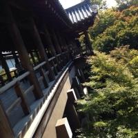 4東福寺通天橋横