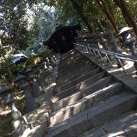 4東福寺お社