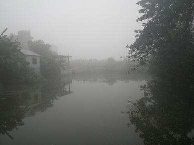 霧がすごい。