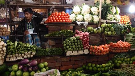 見事に並べられた野菜
