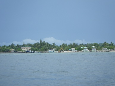 島が見えてきた
