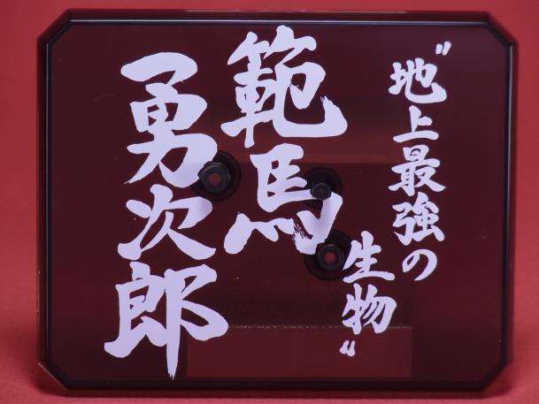 121107FZ範馬勇次郎 ②内容11.JPG