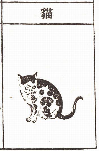 『本草綱目』に出てくる猫の図版 (C)表参道・青山・原宿・外苑前・渋谷・源保堂鍼灸院