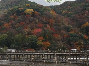 #054  「嵐山」