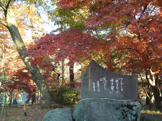 長瀞 月の石もみじ公園の紅葉(10)