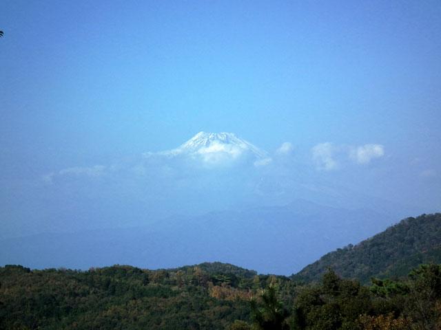 修善寺 もみじ林での富士山