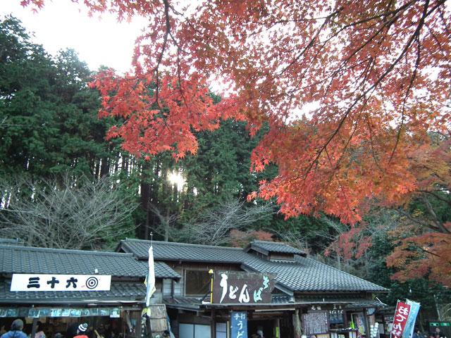 2014修善寺・虹の郷の紅葉(2)