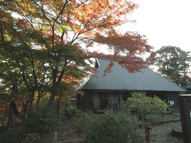 2014修善寺・虹の郷の紅葉(11)