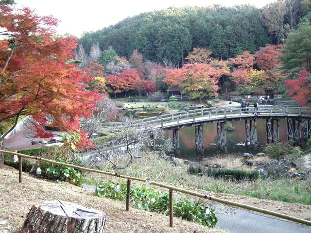 2014修善寺・虹の郷の紅葉(12)