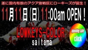 saitama041_convert_20121107224023.jpg
