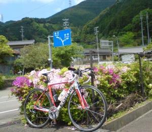 moblog_407d0bbd.jp