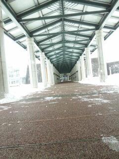 通路_雪かき