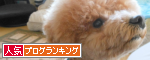 banner(11).png
