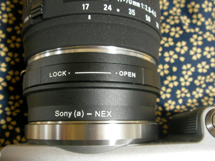 SANY0333.jpg