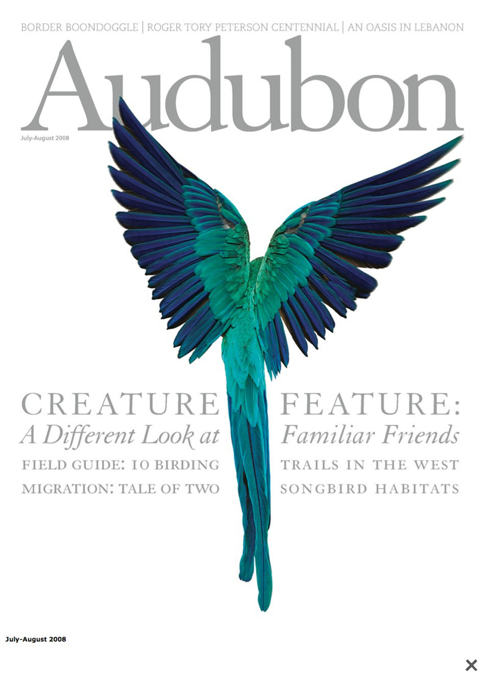 audubon2.jpg
