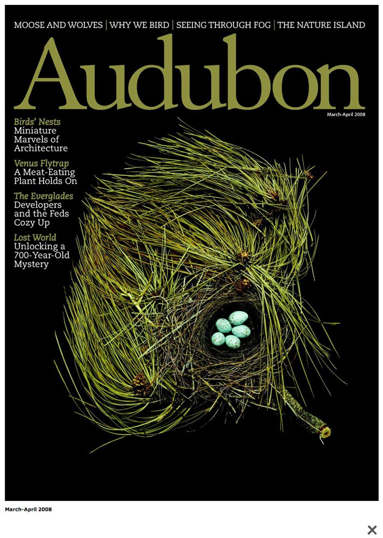 audubon3.jpg