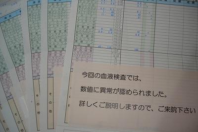 s-yabaishi.jpg