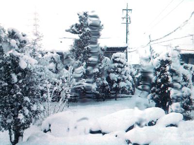 伊勢神宮 お神楽 雪