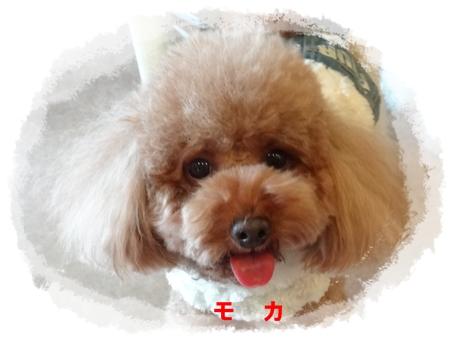 3_20121222183810.jpg