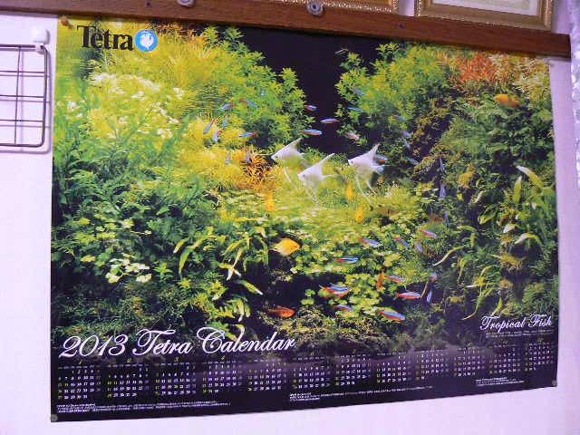 テトラカレンダー1