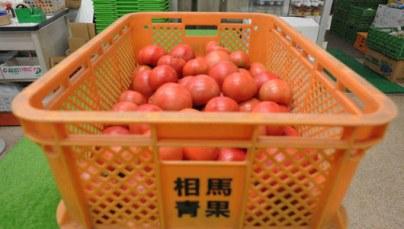 FukushimaFoodExports_main_0.jpg