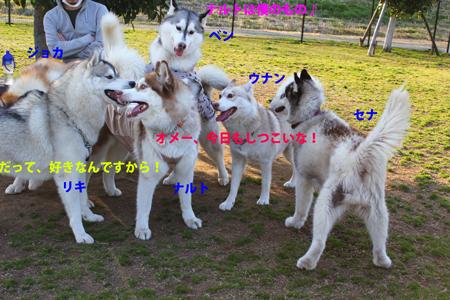 IMG_9123.jpg