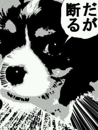 manga_20121004215240.jpg