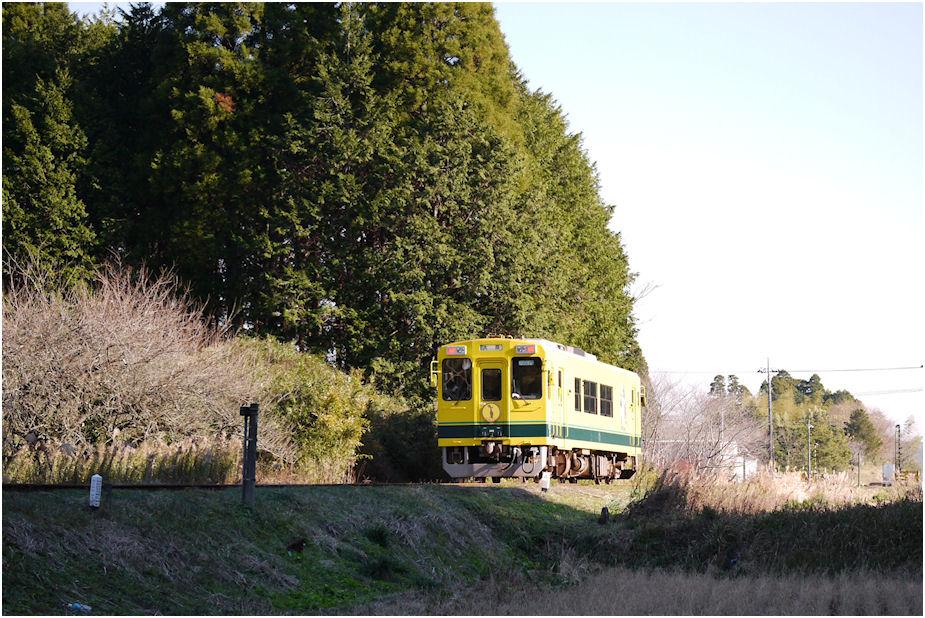 いすみ鉄道 2012年暮れ3