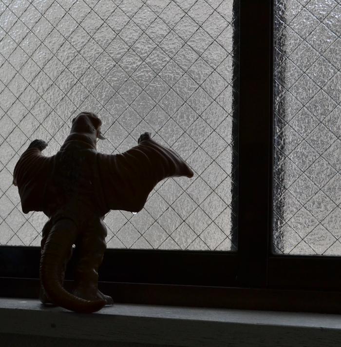 20130114_snow (2)