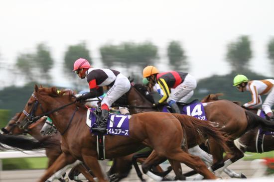秋華賞レース2