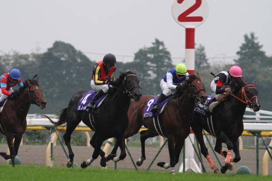 天皇賞レース2