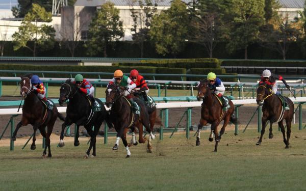 ラジニケ・レース2