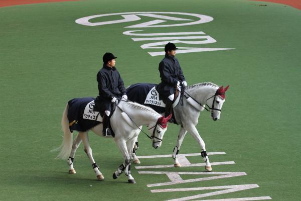 阪神競馬場・誘導馬