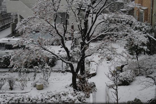 雪景色2013