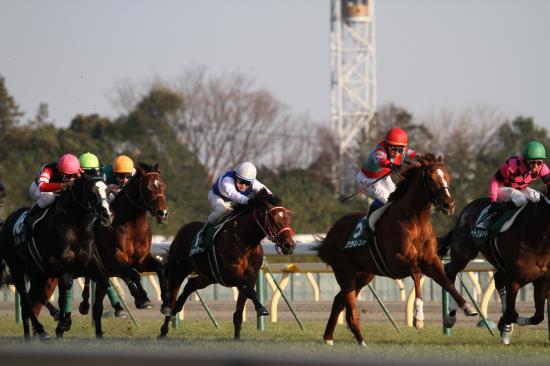 東京新聞杯レース1