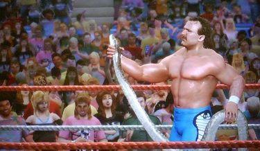 WWE Legends of WrestleMania】...