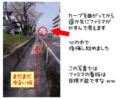yo_0508_09.jpg