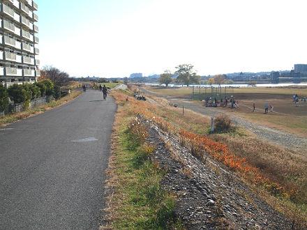 2012121610.jpg