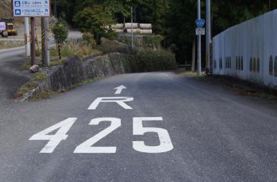 4252.jpg