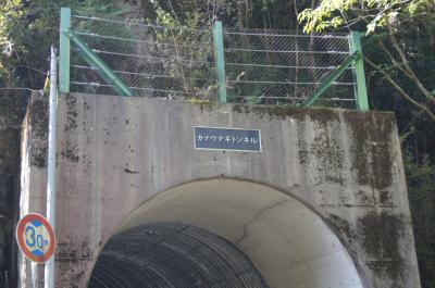 kouya8.jpg