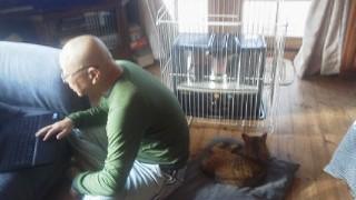 パンダと父