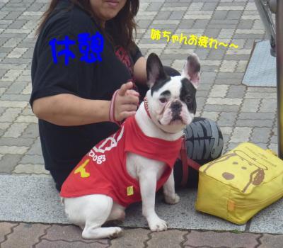 0526竭ェ_convert_20120526232937