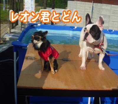 縺顔・ュ繧・5_convert_20120730225034