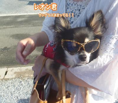 縺顔・ュ繧・4_convert_20120730224827
