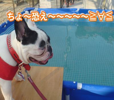 縺顔・ュ繧・_convert_20120730214341