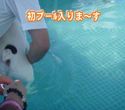 縺顔・ュ繧・_convert_20120730214447
