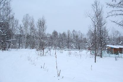 201212151.jpg