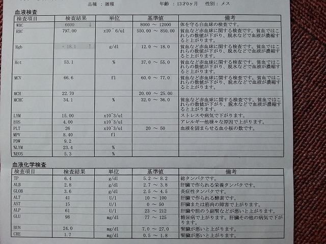 s-!cid_da569b8e444c4dc45d24c4b3fb72cf60.jpg