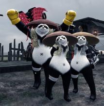 panda002.jpg