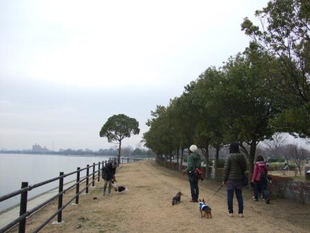 湖岸を歩く